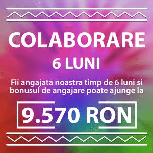 fundal colorat litere albe colaborare 6 luni 9570 RON